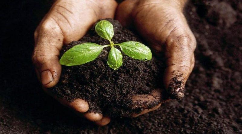 Agroecologia, Gastronomia e Salute… scopriamo i temi della conferenza #FuturiSolidali di Domenica mattina