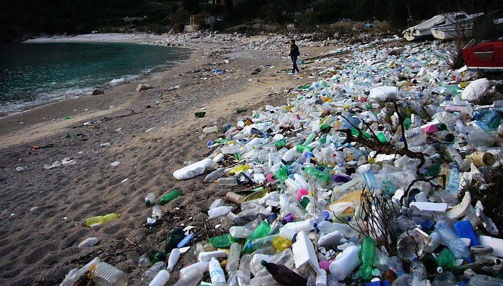 #futurisolidali Dal rifiuto alla risorsa, l'impronta ecologica dei nostri consumi